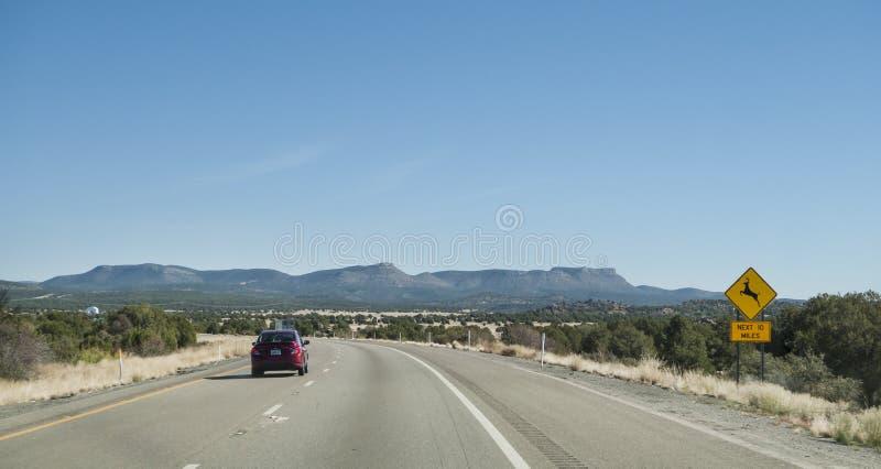 Västra Arizona huvudväg med hjortar som korsar tecknet royaltyfria foton