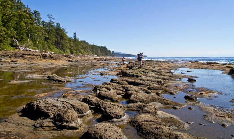 västra fotvandra trail för kust royaltyfri foto