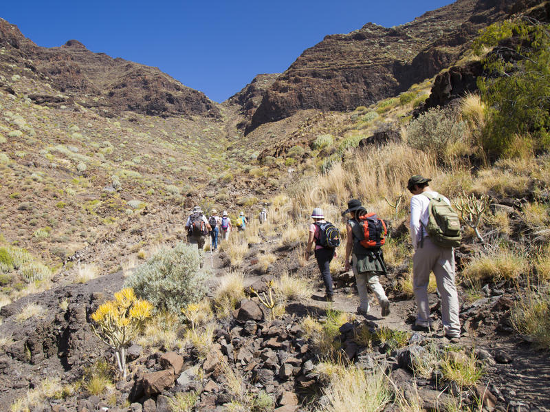 Västra Gran Canaria, Maj arkivbild