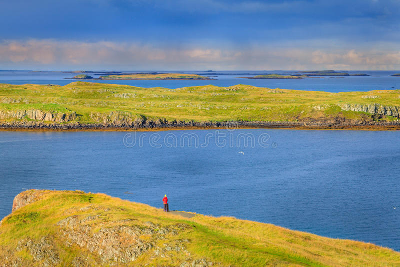 Västra Island kust fotografering för bildbyråer
