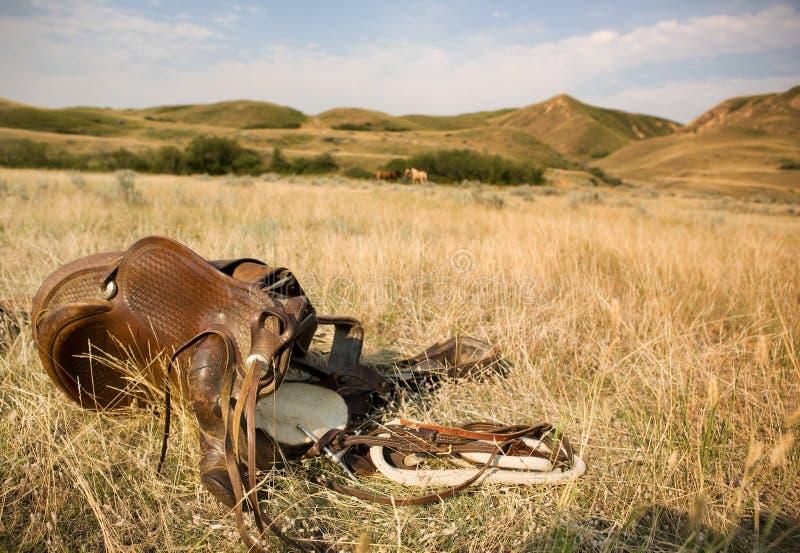 västra sadel fotografering för bildbyråer