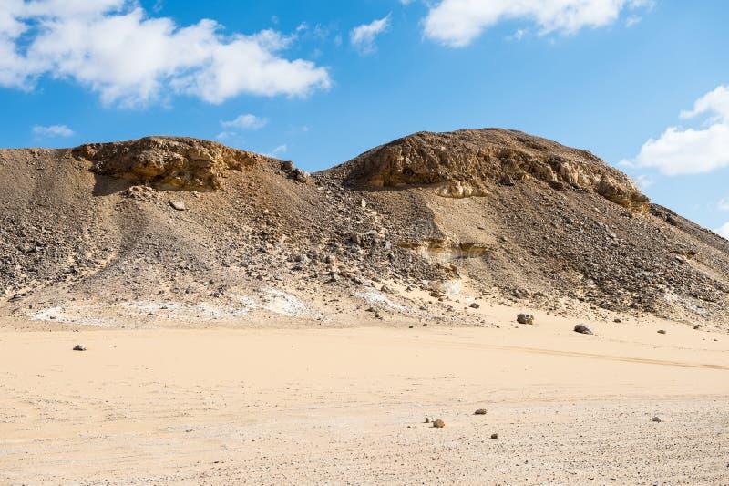 Västra vit öken, i Egypten royaltyfria foton