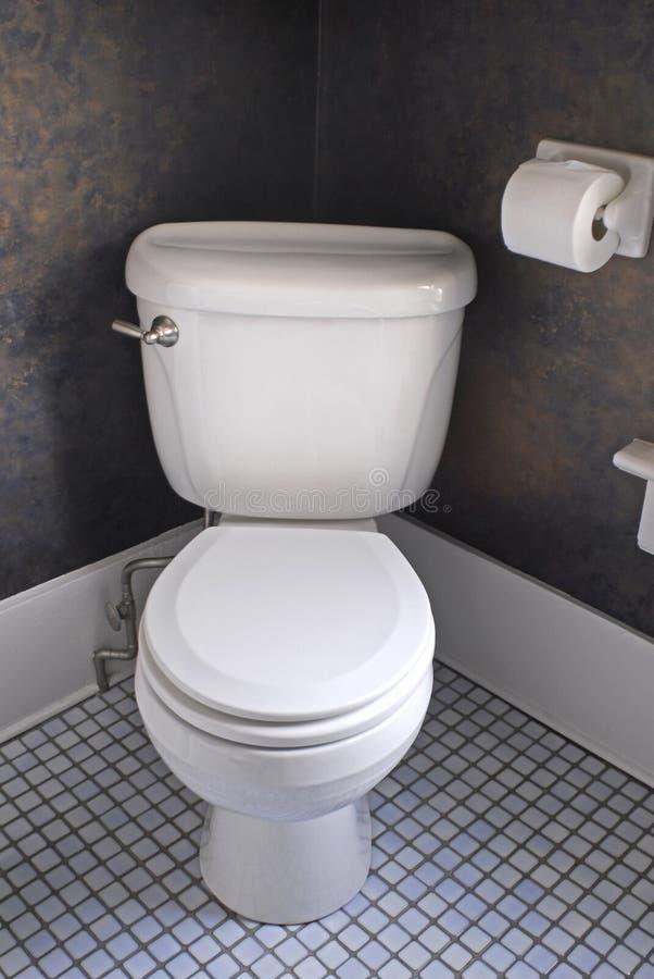 västra white för toalett royaltyfri foto