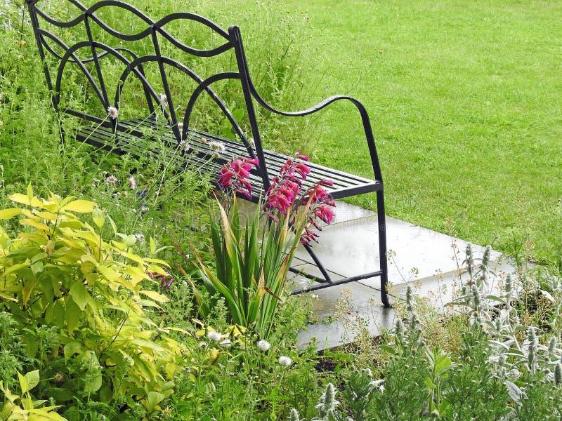 Växa för lösa blommor vid den trädgårds- bänken royaltyfria foton