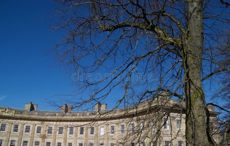 Växande byggnader för träd och Buxton royaltyfri foto