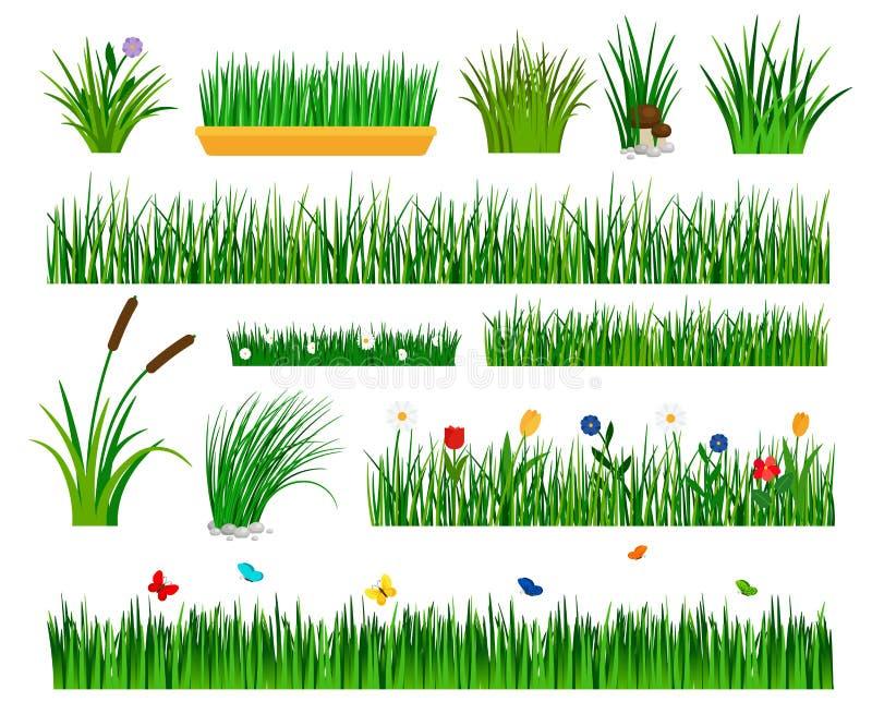 Växande gräsmall för trädgård vektor illustrationer