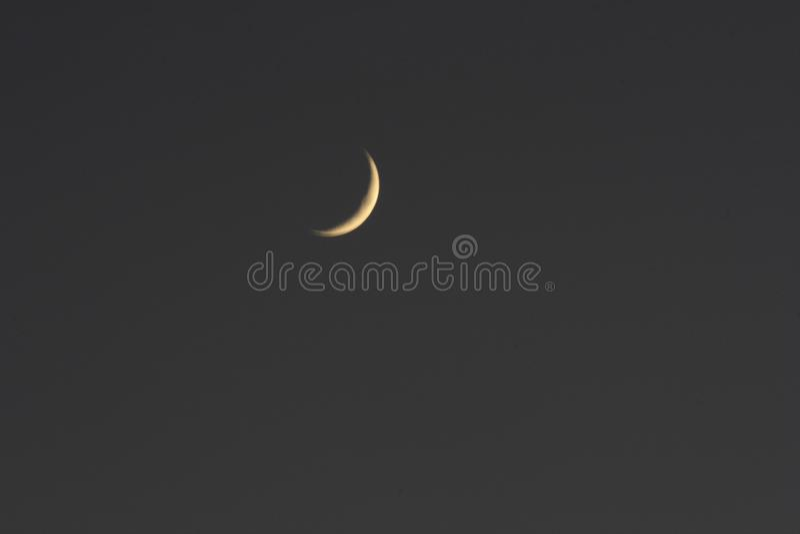 Växande moon royaltyfria bilder