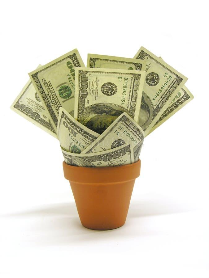 växande pengar royaltyfri foto