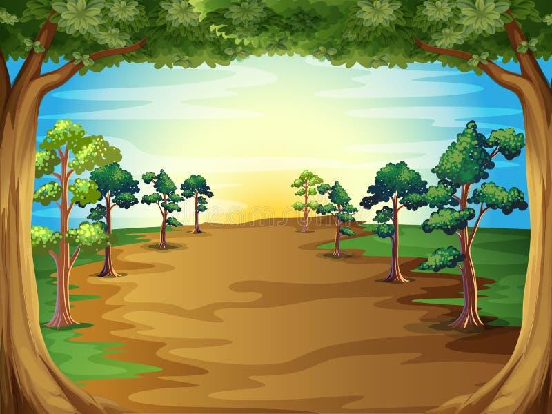 Växande träd på skogen stock illustrationer