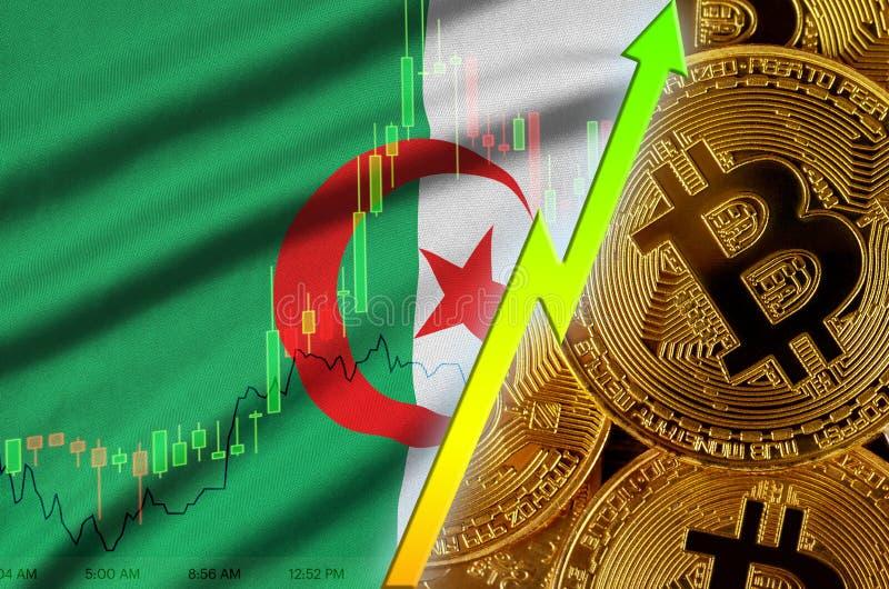 Växande trend för för Algeriet flagga och cryptocurrency med många guld- bitcoins arkivfoton