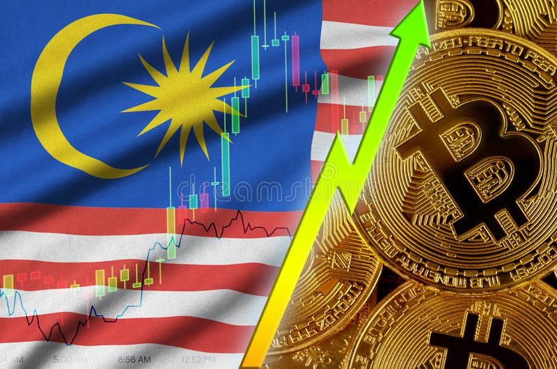 Växande trend för för Malaysia flagga och cryptocurrency med många guld- bitcoins royaltyfri illustrationer
