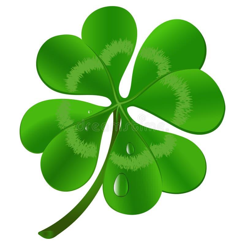Växt av släktet Trifolium för fyra blad - symbol för dag för St Patrick ` s royaltyfri illustrationer