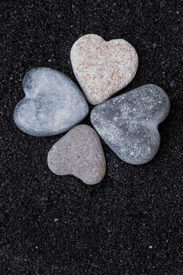 Växt av släktet Trifolium för tjänstledigheter för stenhjärtor fyra arkivbild