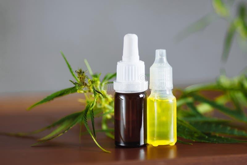 Växt- farmaceutisk CBD olja för hampaväxt från kruset Cannabis för CBD-oljaflaskor att dra ut tinkturflytande på trätabellen l?ka royaltyfri foto