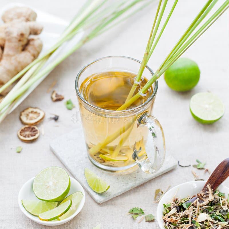 Växt- grönt te med lemongrass och ingefäran arkivfoton