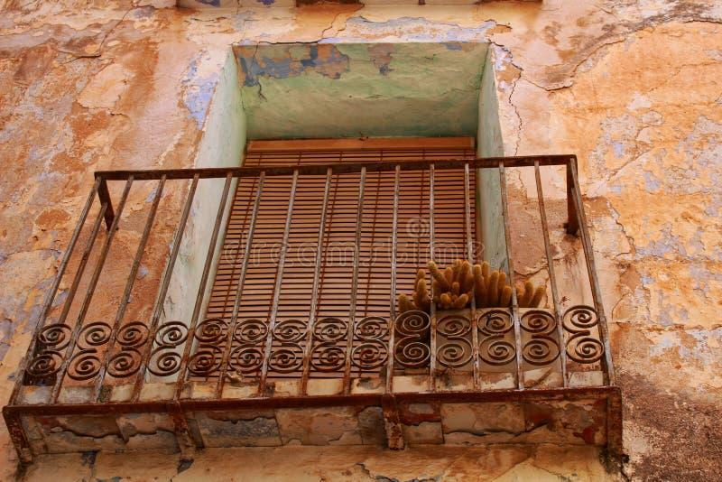 Växt i en balkong av ett gammalt övergett hus royaltyfri foto