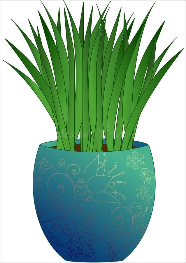 Växt i en krukadesign arkivbilder