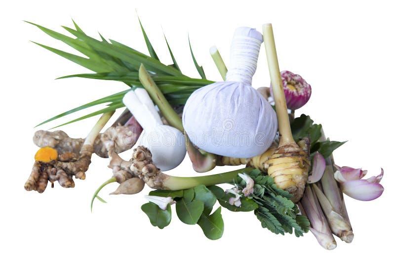 Växt- kompressboll för thai massage och thailändska naturliga örtingredienser för varm den isolerade kompressterapimassage och na royaltyfri foto
