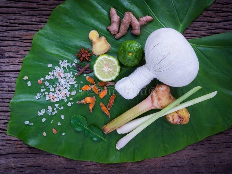 Växt- kompressboll för thai populär massage- och brunnsortbehandling royaltyfri fotografi