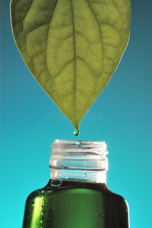 Växt- medicin royaltyfria foton