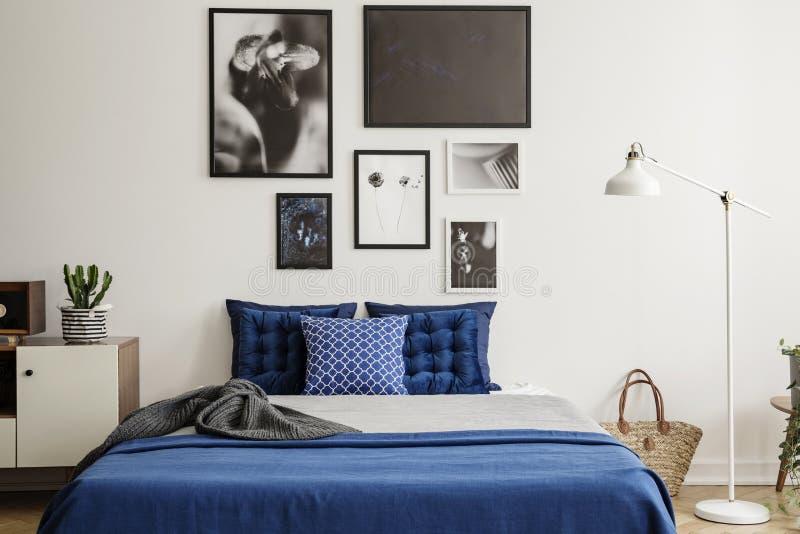 Växt på kabinettet bredvid marinblå säng i sovruminre med den vita lampan och gallerit Verkligt foto royaltyfri fotografi