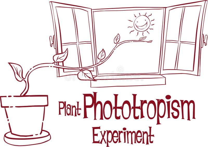 VÄXT PHOTOTROPÄ°SM EXPERÄ°MENT stock illustrationer