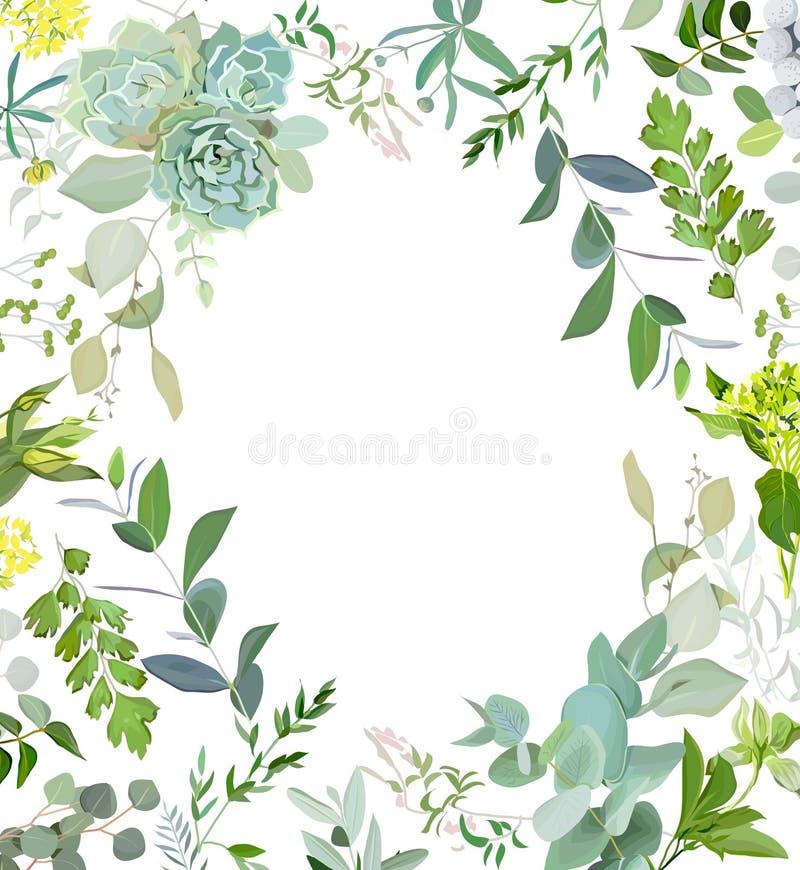 Växt- ram för blandningfyrkantvektor Den målade handen planterar, filialer, sidor, suckulenter och blommor på vit bakgrund vektor illustrationer
