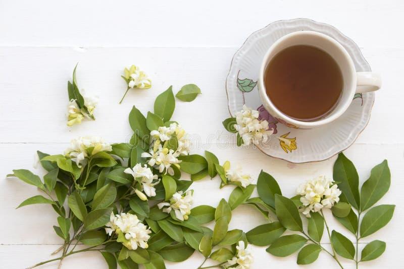 Växt- sund drink för varm ljust rödbrun fruktsaft från naturen arkivbilder