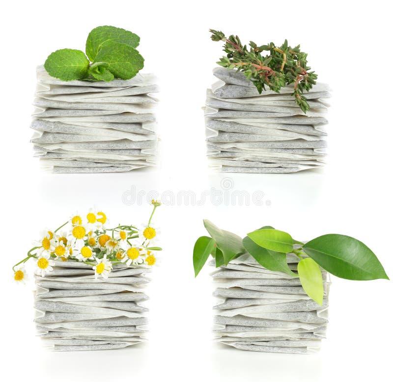 växt- teateabags arkivfoton