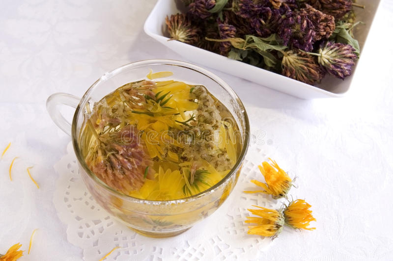 växt- varm medicinsk tea arkivbilder