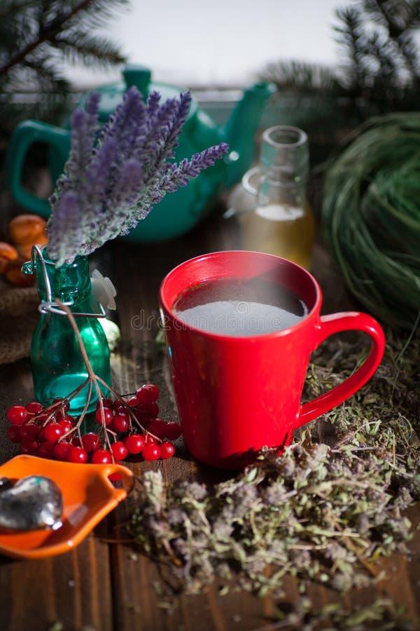 Växt- varmt te med timjan arkivfoto