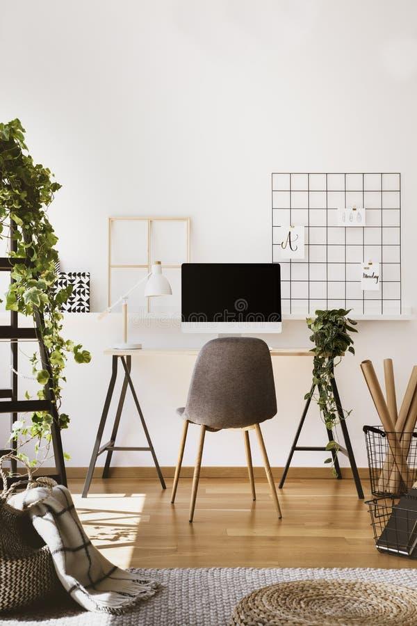 Växt, vit lampa och skrivbords- dator på skrivbordet i inre för freelancer` s med grå färgstol Verkligt foto royaltyfria bilder