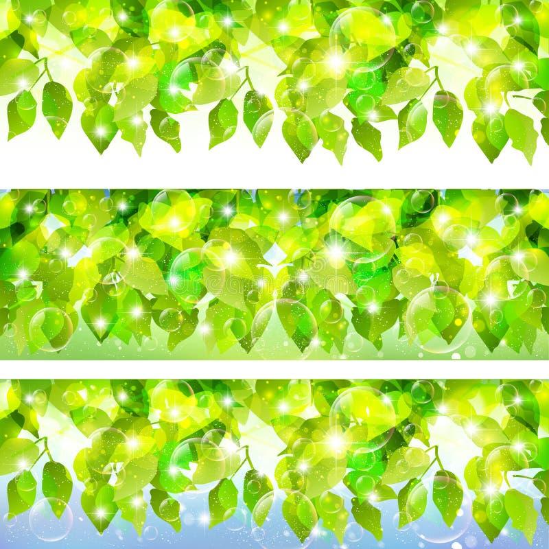 Download Växtbladbakgrund vektor illustrationer. Illustration av nytt - 37347188