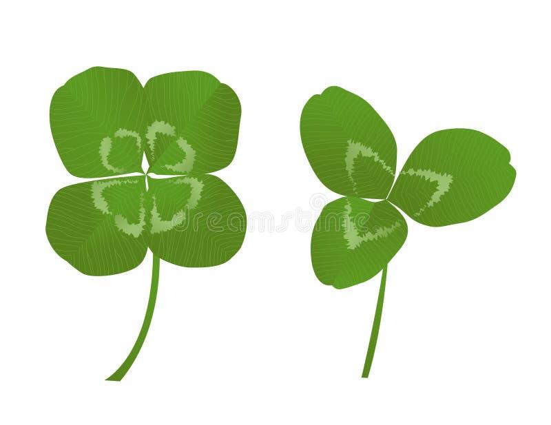 växter av släkten Trifolium royaltyfri illustrationer
