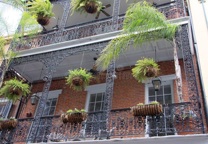 Växter och balkong fotografering för bildbyråer