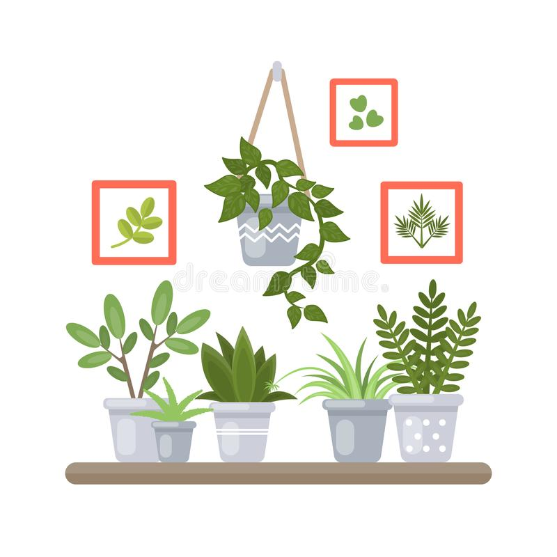Växter på hylla stock illustrationer