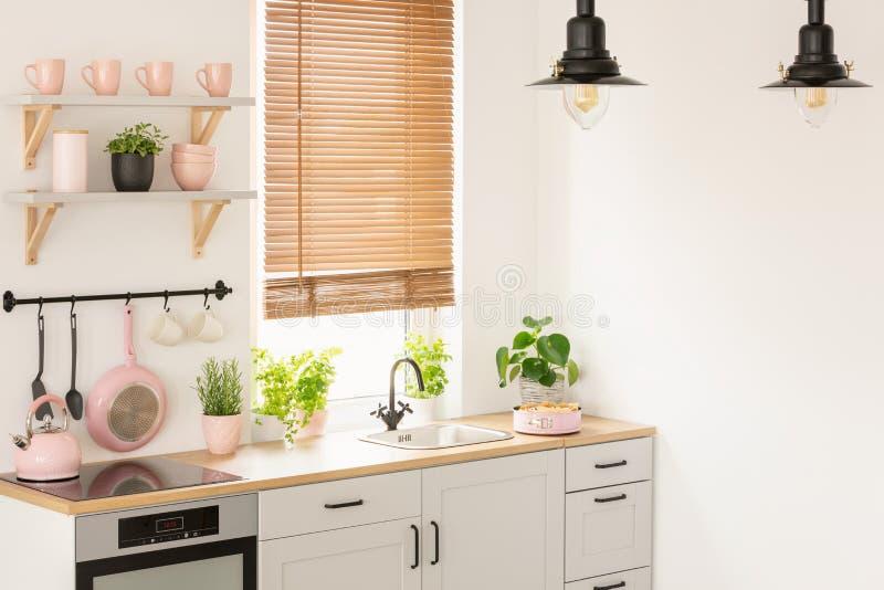 Växter på träcountertop i kökinre med rullgardiner, lam arkivfoton