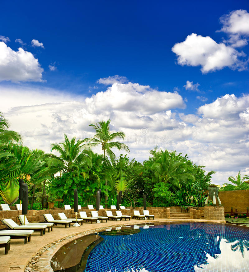 växter pool omgivet simma som är tropiskt royaltyfria bilder