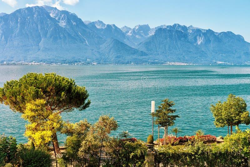 Växter som blomstrar på promenad av Genève sjön i Montreux Riviera royaltyfri foto