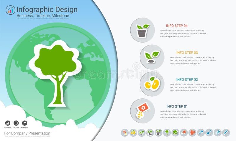 Växter som växer timelineinfographics med symbolsuppsättningen vektor illustrationer