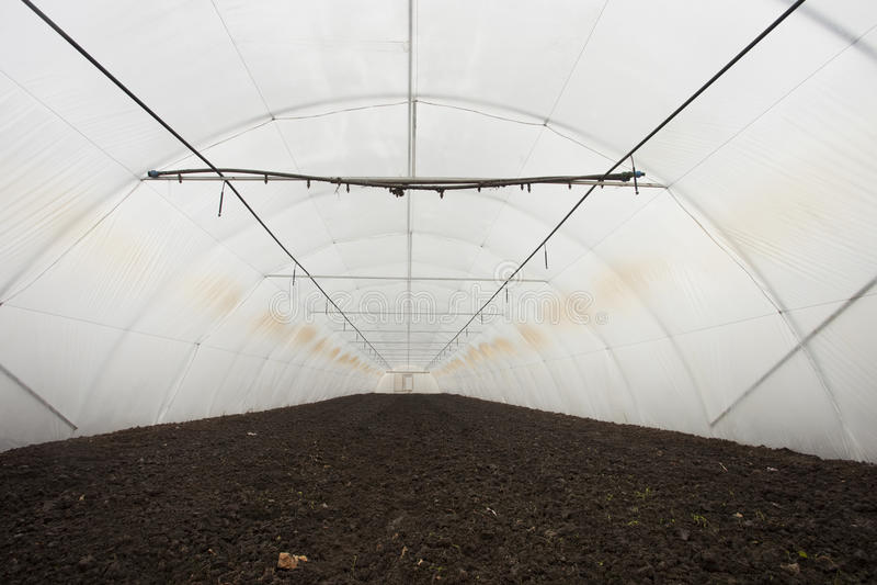 växthus inom arkivfoton