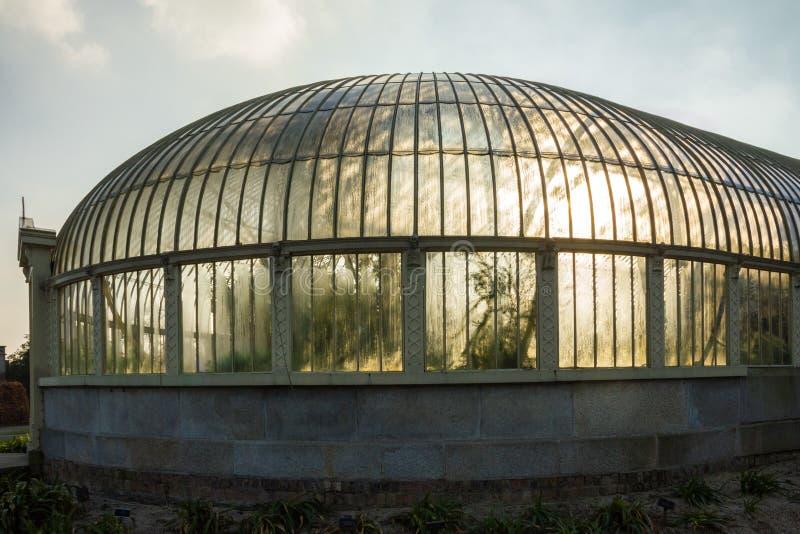 växthus Nationella botaniska trädgårdar dublin ireland fotografering för bildbyråer