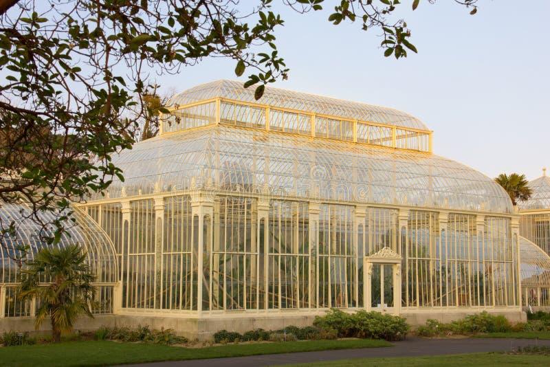 växthus Nationella botaniska trädgårdar dublin ireland arkivbild