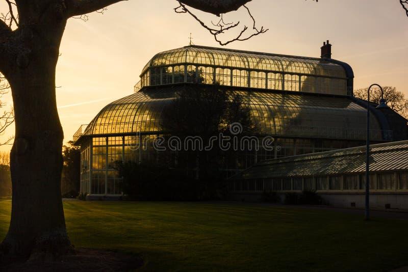 växthus Nationella botaniska trädgårdar dublin ireland royaltyfria foton