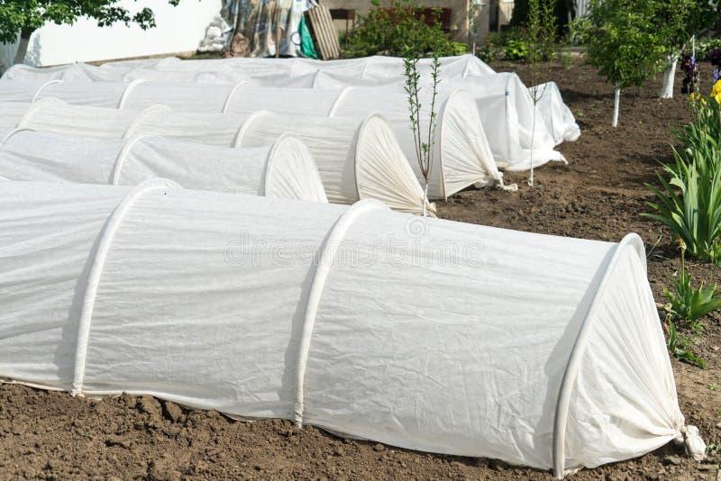 Växthus på täppan växande organiska produkter på deras land fotografering för bildbyråer