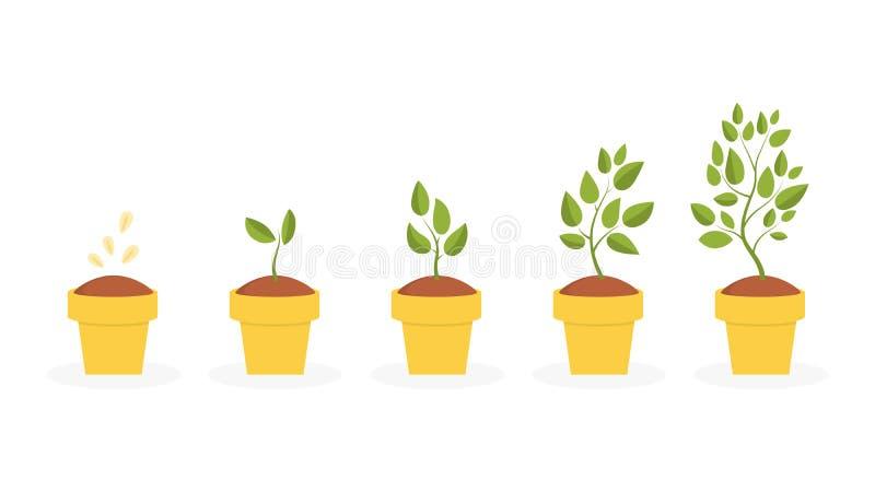 Växtlivcirkulering stock illustrationer