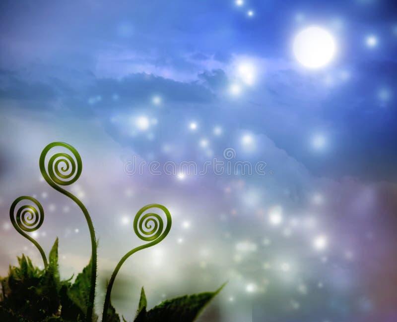 Växtrankor på nattfantasibakgrund royaltyfri illustrationer