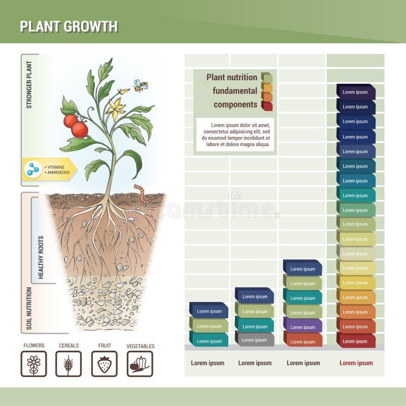 Växttillväxt stock illustrationer