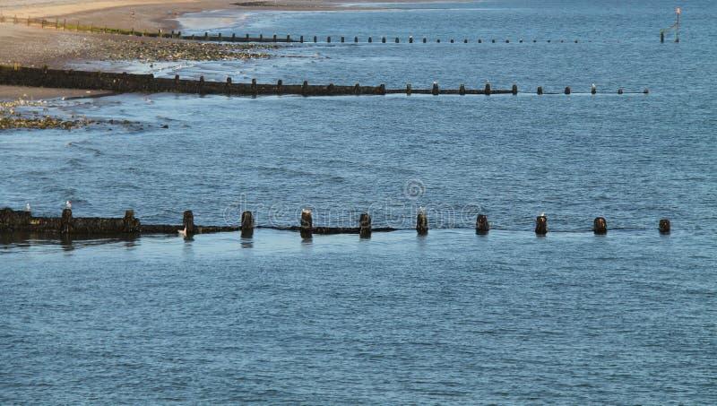 Vågbrytare för strand för havsförsvar fotografering för bildbyråer