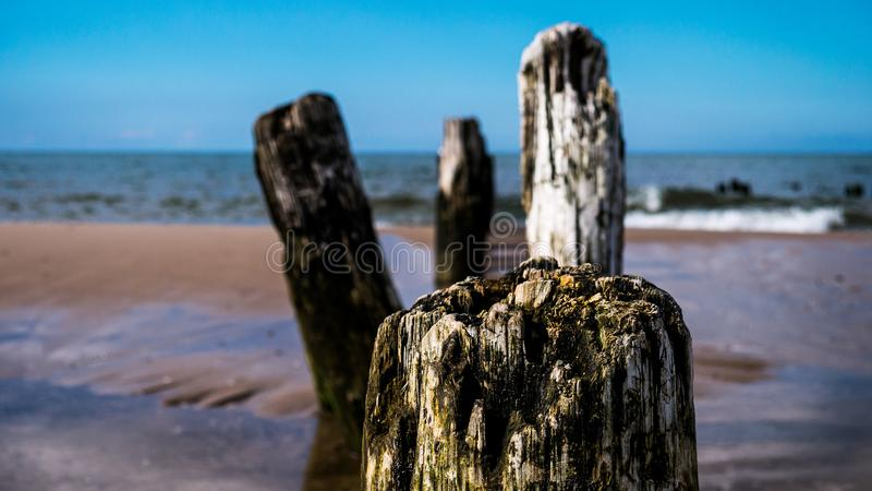 Vågbrytarekonstruktion på en strand royaltyfria bilder